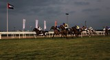 The Presidents cup horse race Abu Dhabi Equestrian Club